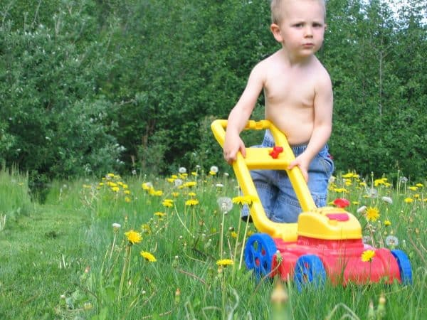 how to refill trimmer line kid and toy lawn mower middle class dad