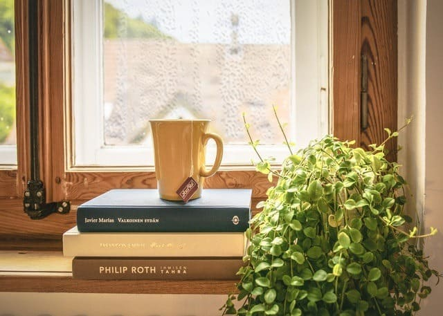 defogging double pane windows and double pane window fogging repair coffee cup on a stack of books in front of a beautiful window Middle Class Dad