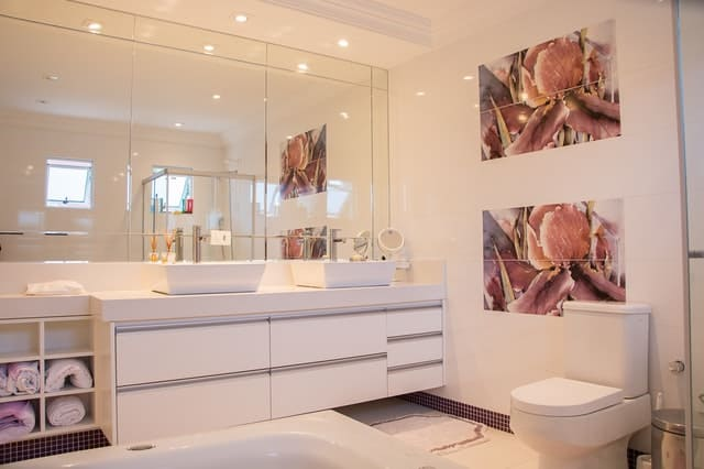 How to Unclog a Low Flush Toilet