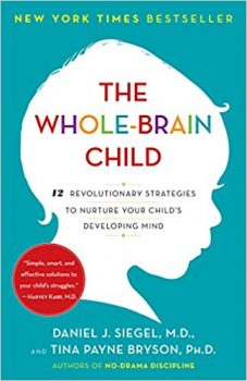 Baumrind's parenting styles Middle Class Dad The Whole-Brain Child: 12 Revolutionary Strategies to Nurture Your Child's Developing Mind, Survive Everyday Parenting Struggles, and Help Your Family Thrive