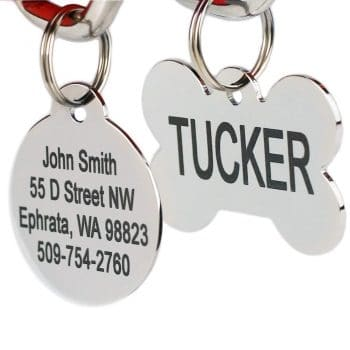 Middle Class Dad road trips with your dog GoTags Pet ID Dog Tags. Stainless Steel. Custom Engraved. Includes up to 8 Lines of Personalized Text with Front and Backside Engraving.